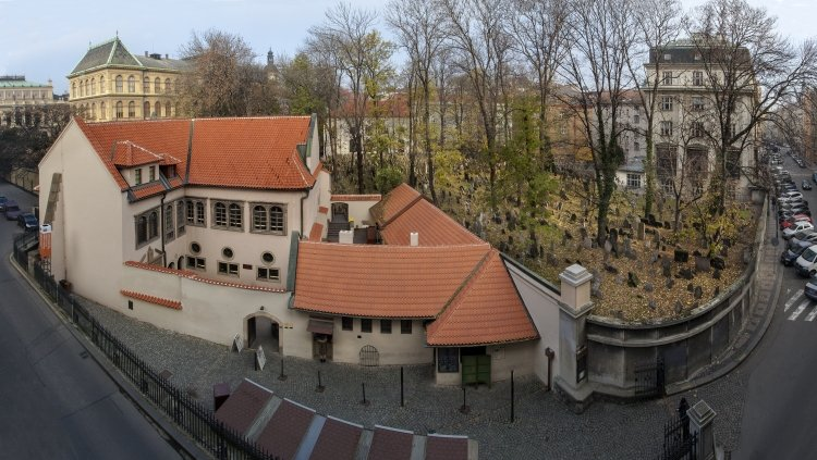 Pinkasovasynagoga